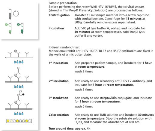 hpv vírus nachweisen